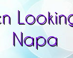 Key Things To Note When Looking For Reliable Realtors In Napa
