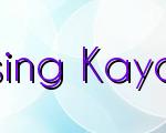 Tips For Purchasing Kayak Amelia Island