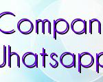 Internet Marketing Companies & The Details Of Whatsapp