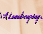 Maintaining Your Clients As A Landscaping Services Nashville Provider