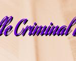 Duties Of Vacaville Criminal Defense Attorney