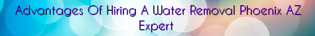 Advantages Of Hiring A Water Removal Phoenix AZ Expert