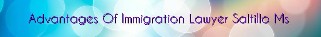 Advantages Of Immigration Lawyer Saltillo Ms