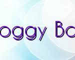 Insights On Foggy Bottom Canoe