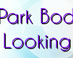 Learn How A Lincoln Park Body Repair Service Gets Your Car Looking Like New