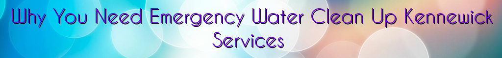 Why You Need Emergency Water Clean Up Kennewick Services
