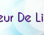 Building Fleur De Lis Software