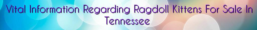 Vital Information Regarding Ragdoll Kittens For Sale In Tennessee