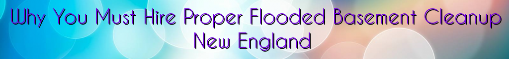 Why You Must Hire Proper Flooded Basement Cleanup New England