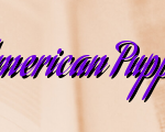 Basics For American Puppies For Sale