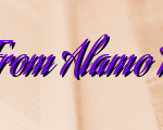 Get The Best From Alamo Heights HVAC