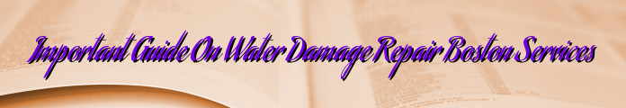 Important Guide On Water Damage Repair Boston Services