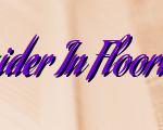 Points To Consider In Flooring Procedures