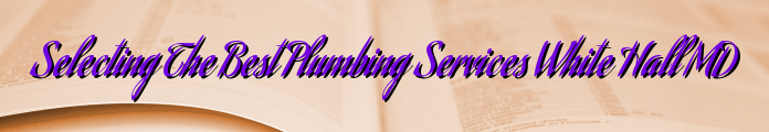 Selecting The Best Plumbing Services White Hall MD