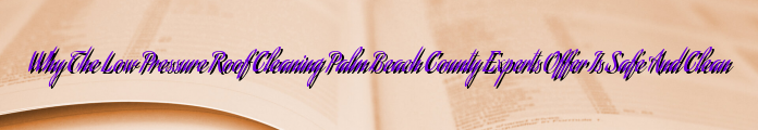 Why The Low Pressure Roof Cleaning Palm Beach County Experts Offer Is Safe And Clean
