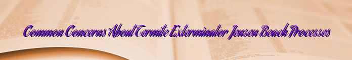 Common Concerns About Termite Exterminator Jensen Beach Processes