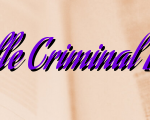 Duties Of Vacaville Criminal Defense Attorney