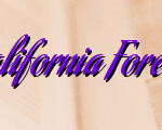 Importance Of California Foreclosures For Sale