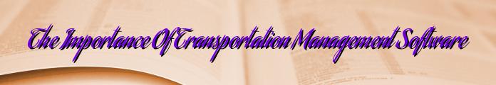 The Importance Of Transportation Management Software